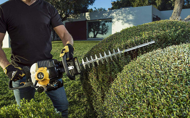 Best Petrol Hedge Trimmer Reviews: Buying Guide