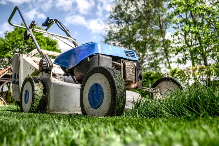 Best Lawnmowers – Ultimate Buying Guide